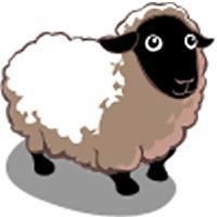 Sheep Avatar